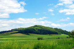 Green field. Excellent sky and green fields landscape Stock Photo
