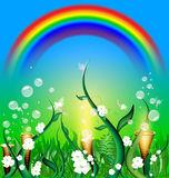 Green field of fairy. Blue skies, green field with herb, plants and flowers, flying fairies, colored rainbow Royalty Free Stock Photo