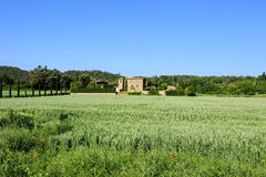 Green field and farm Royalty Free Stock Photography