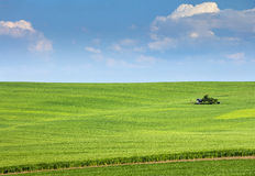 Green field and farm house under blue sky Stock Image