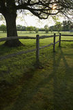 Green Field With Fence Royalty Free Stock Image