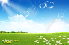 Green field with flowers. And blue sky Stock Image