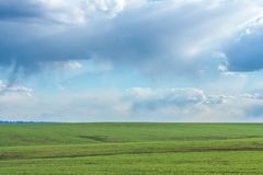 Green field with fresh vibrant grass and blue sky with dramatic clouds at the daytime Stock Photos