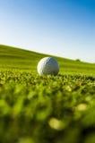 Green field golf ball Stock Photos