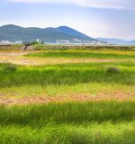 Green field of gras with red stripes and mountains on the horizon in Montenegro stock photography