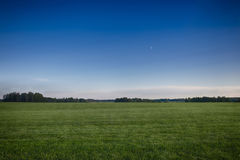 Green field grass background. Green field grass and blue sky on background stock photography