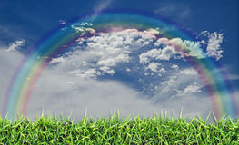 Green field, grass, blue sky and white clouds. Stock Photos