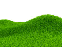 Green field of grass Royalty Free Stock Photo