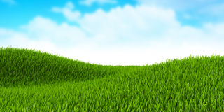 Green field of grass Royalty Free Stock Images