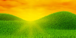 Green field of grass Royalty Free Stock Image