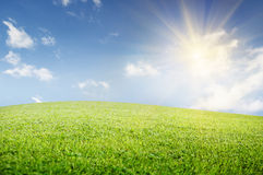 Green field of   grass and perfect cloudy sky. Background Stock Photography
