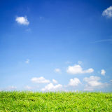 Of green Field grass and sky. Royalty Free Stock Photography