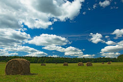 Green field with haystacks Royalty Free Stock Images