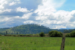 Green Field and Hills Beyond a Barbed Wire Fence Royalty Free Stock Photography