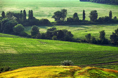 Green field and hills with trees Royalty Free Stock Photos