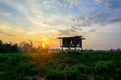Green field & hut under sunrise sky. In thailand Royalty Free Stock Photos