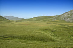 Green field-Landscape. Beautiful Macedonian mountain pasture, mountains in the background Royalty Free Stock Images