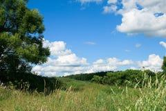 Green Field - Landscape