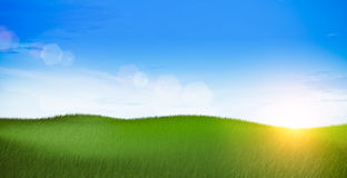Green field landscape. At morning Stock Images
