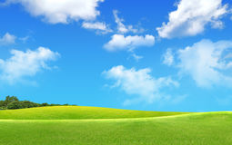 Free Green Field Landscape Stock Photography - 9520542
