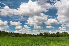 Green field landscape  cloudscape Royalty Free Stock Image