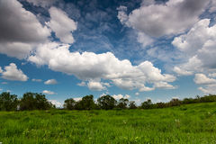 Green field Landscape cloudscape Stock Image