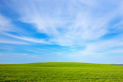 Green field landscape, sunny blue sky Royalty Free Stock Image