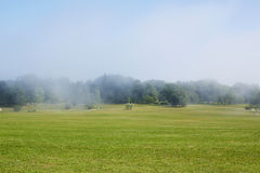 Green field with morning mist Royalty Free Stock Photography