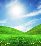 Green field and mountains Stock Photography