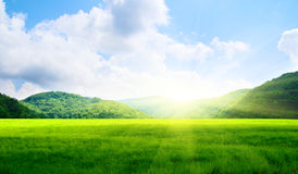 Green field and mountains Royalty Free Stock Image