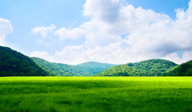 Green field and mountains Royalty Free Stock Images