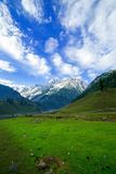 Green field with the mountains Royalty Free Stock Images