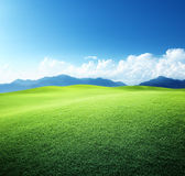 Green field and mountains Royalty Free Stock Photo