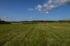 Green Field with Mowed Grass. Shot of a green field with mowen grass in sunny summer day Stock Photo