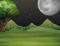 Green field at night time. Illustration Stock Images