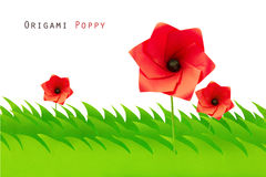 Green field with origami poppy Royalty Free Stock Image