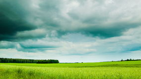 Green field with overcast clouds time lapse. Green field with moody overcast clouds time lapse stock video