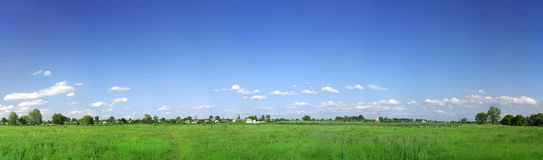 Green field panorama Royalty Free Stock Image