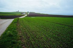 A green field with a path to a country house and a lighthouse stock image