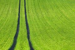 Green Field Path Royalty Free Stock Photo