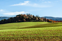 Green field in Provence, France. Shot in a quiet morning Royalty Free Stock Photos