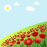 Green field with red poppies under hot summer sun. Green fresh grass field with bright red poppies under summer sun in blue sky with fluffy clouds vector Royalty Free Stock Image