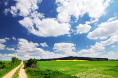 Green field, road, blue sky and white clouds Stock Photos