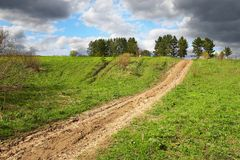 Green field and road to anywhere. Sibir. Russia Stock Images