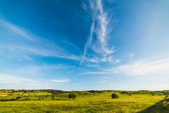 Green field in Sardinia Stock Image