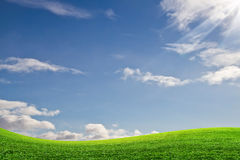 Green field and sky. Abstract background of blue sky and green field Royalty Free Stock Image