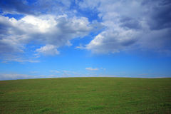 Green field and sky Stock Images
