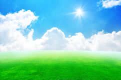 Green field and sky blue with white cloud Stock Image