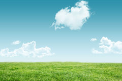 A green Field and sky. Field and sky with copy space Stock Photos