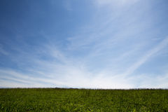 Green Field sky  Level - Stock Image Royalty Free Stock Image